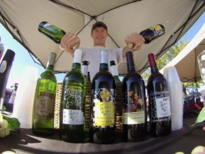 Giggling Grapes Winery Your Favorite Table Wine for Every Occasion Process Wine Stroll